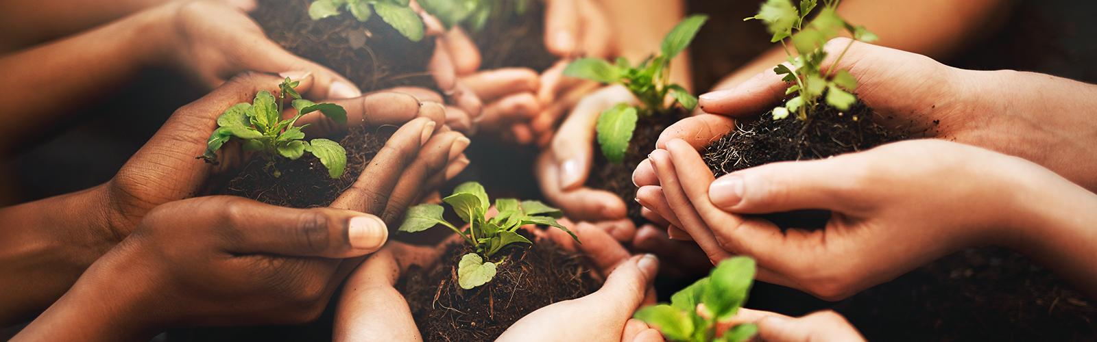 Environnement fondation CA